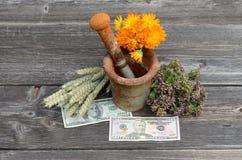 Almofariz oxidado antigo do ferro e várias ervas médicas com dinheiro do dólar imagem de stock