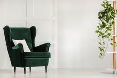 Almohada blanca en la butaca verde esmeralda en hiedra interior de la sala de estar elegante en pote en estante fotografía de archivo libre de regalías