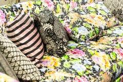 Almohadas coloridas agradables en el sofá del hotel Fotos de archivo
