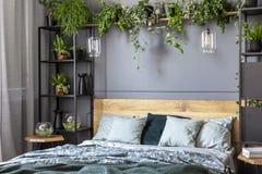 Almohadas grises en cama de madera en interior oscuro del dormitorio con las lámparas a Fotos de archivo
