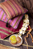 Almohadillas en kiwi del este del fith del estilo Foto de archivo