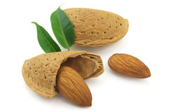 Almond. Tasty almond with leaves on a white background stock images