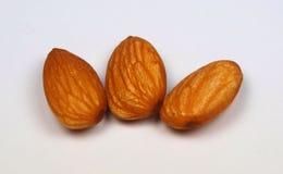 Almond. Macro photo of almond seeds isolated on white royalty free stock photos