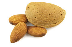 Almond. Sweet almond on a white background royalty free stock image
