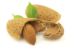 Almond. And kernel with leaves stock photo
