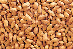 Almond. A background of an almond Stock Images