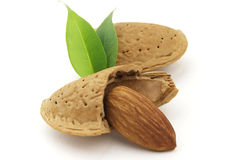 Almond. Sweet and beauty almond with leaves royalty free stock photos