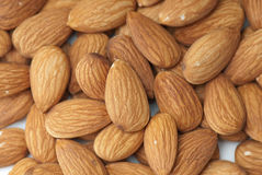 Almond Stock Image