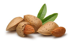 Free Almond Stock Images - 22540984