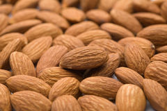 Almond. Of the white back Stock Photography
