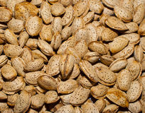 Almond. S in shell, dry bulk in the sun Royalty Free Stock Image