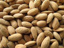 Almond. Closeup of group shelled almonds Stock Image