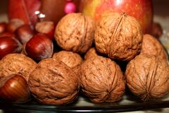 Almond Acorn and Red Apple Stock Images