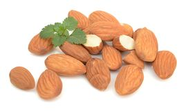 Almond. Nut isolated. Nuts, fruit Stock Photography