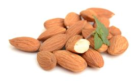 Almond. Nut isolated. Nuts, fruit Royalty Free Stock Photo