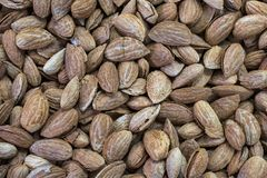 Almond, almond nuts brown, food background a raw almonds. Almond, almond nuts brown, food background raw almonds Stock Images