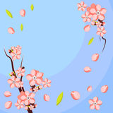 Almond or apricot flower branch. Template for greeting card and invitation Royalty Free Stock Images