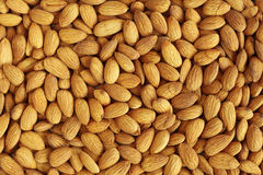 Almond Background Stock Photography
