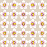 Almond blossom pattern Royalty Free Stock Photo