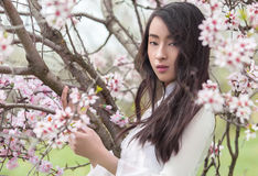 Almond blossoms - Serenity Portrait Vietnamese girl in White Ao Royalty Free Stock Photo