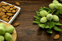 Almond branches and nuts Royalty Free Stock Photography