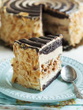 Almond Chocolate Crunch Cake Royalty Free Stock Photography