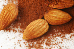 Almond and cinnamon powder Royalty Free Stock Photos