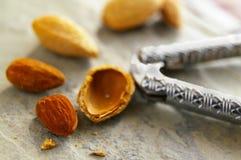 Almond closeup Stock Photo