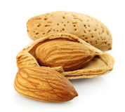 Almond closeup Stock Image