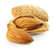 Almond closeup Stock Image