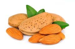 Almond closeup Royalty Free Stock Photo
