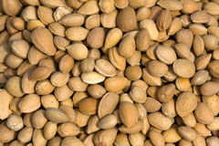 Almond closeup background Stock Image