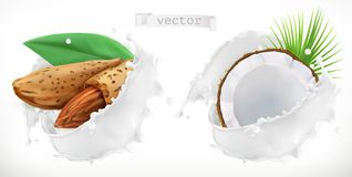 Almond, coconut and milk splash. 3d vector vector illustration