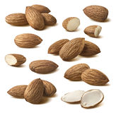 Almond composition set isolated on white background Royalty Free Stock Photos