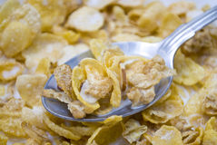 Almond Cornflake Cereal with Milk. Shot of a cornflake cereal with almonds in a bowl with milk and a spoon royalty free stock photos