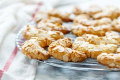Almond crescent cookies on a metal grid. Stock Photo