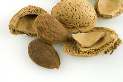 Almond. Crushed almond shell exploded from the natural almond Stock Images