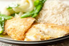 Almond crusted sole fillets. With fresh snow peas, cauliflower and lemon rice Stock Images
