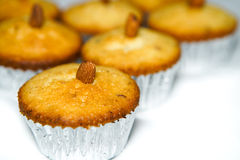 Almond cupcakes Royalty Free Stock Photography