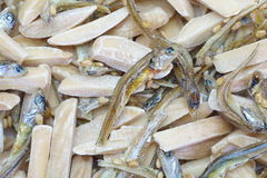 Almond and dried small fish Royalty Free Stock Image