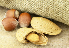 Almond with filbert Royalty Free Stock Image