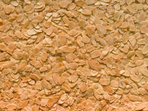 Almond florentine biscuit food background Stock Images
