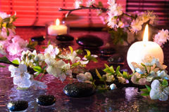 Almond flowers with black stones and candle - light for color therapy treatment. For massage royalty free stock photo