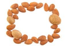 Almond frame Royalty Free Stock Image