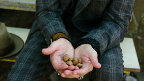 Almond fray in male hands. Closeup stock video footage