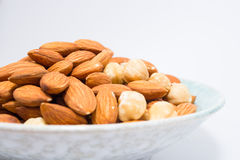 Almond and Hazel nuts Royalty Free Stock Photography