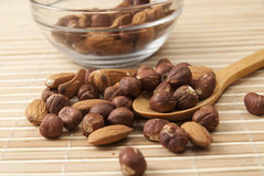 Almond and hazelnut Stock Images