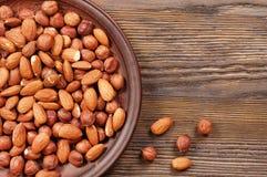 Almond and hazelnut. Royalty Free Stock Photography