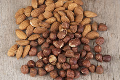 Almond and hazelnut on the wooden table. Close up photo Royalty Free Stock Image