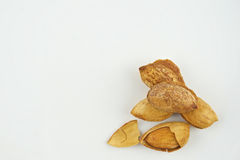 Almond with hull and husk  Stock Images
